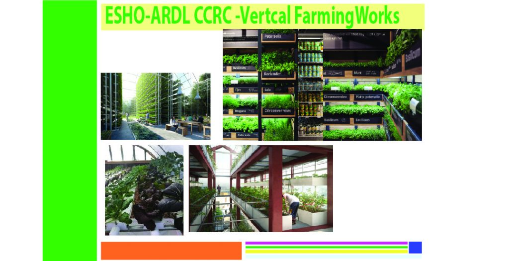 This image has an empty alt attribute; its file name is vertical-farming-1-1024x525.jpg